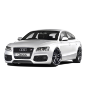 Audi A5 Sportback 2009 (8TA)